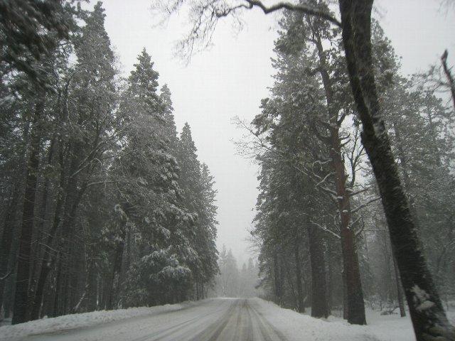 2011_01_25_5122